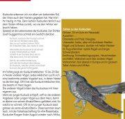 Textverständnis-Trainer Otter & so Kuckuck